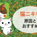 猫ニキビの原因とおすすめのキャットフード