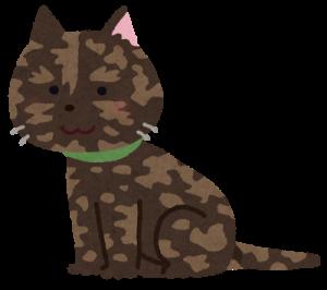 cat_nikibi