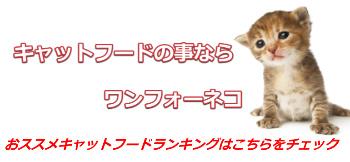 キャットフードおすすめランキングなら安心安全のワンフォー猫