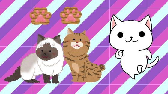 5.2 おすすめ度☆☆ 5歳以降の猫