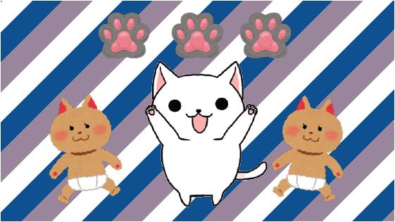 5.1 おすすめ度☆☆☆ 子猫