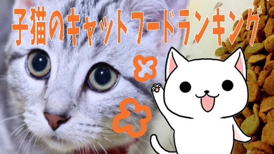 子猫のキャットフードランキング