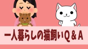 一人暮らしの猫飼いQ&A