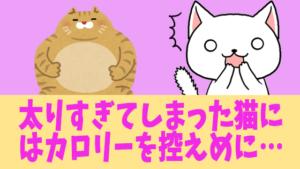 太りすぎてしまった猫にはカロリーを控えめに…
