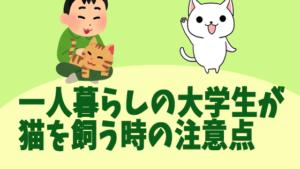 一人暮らしの大学生が猫を飼う時の注意点