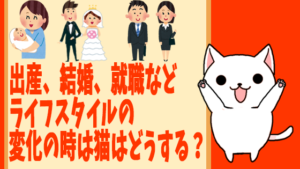 出産、結婚、就職などライフスタイルの変化の時は猫はどうする?