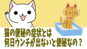 猫の便秘の症状とは。何日ウンチが出ないと便秘なの?