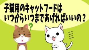 子猫用のキャットフードはいつからいつまであげればいいの?