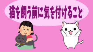 猫を飼う前に気を付けること